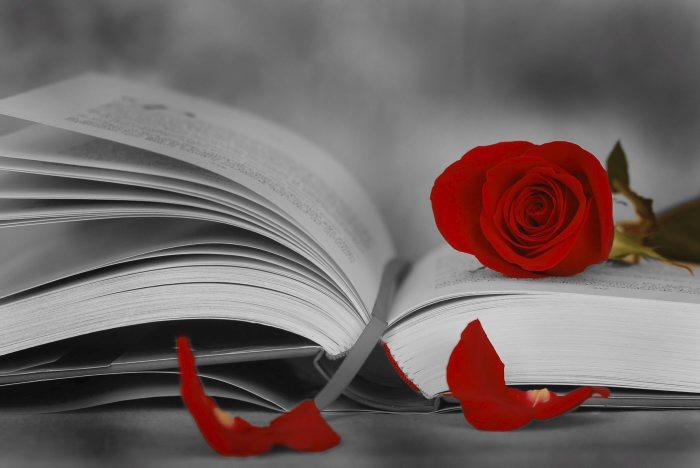 dia do libro