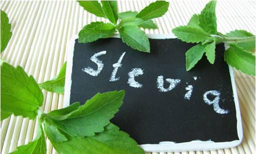 Condis-Stevia