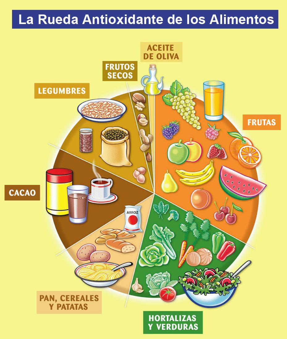 rueda_antioxidantes_HR (1)