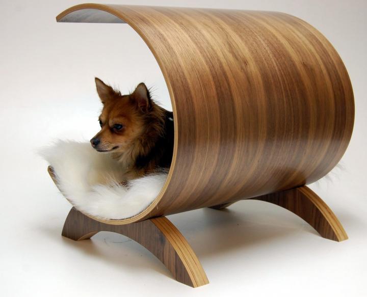 Accesorios para perros share it maybe for Accesorios para mascotas