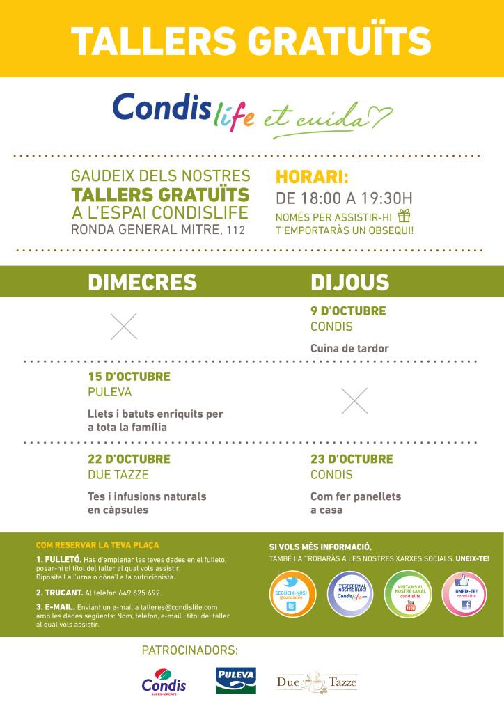 CONDIS_A0_CAT_IMPR_04