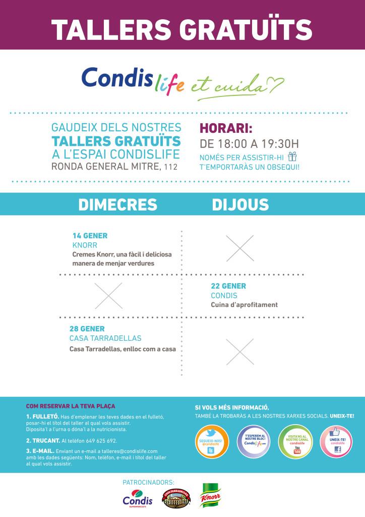CONDIS_A0_CAT_WEB