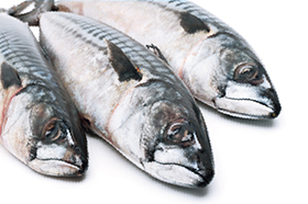 CONDIS_dest_sardinas