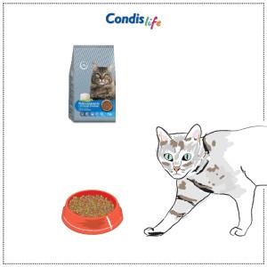 Condislife_complementoGato-09