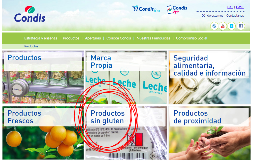 Marca condis sin gluten m s de 300 alimentos para cel acos condislife - Alimentos sin gluten para celiacos ...