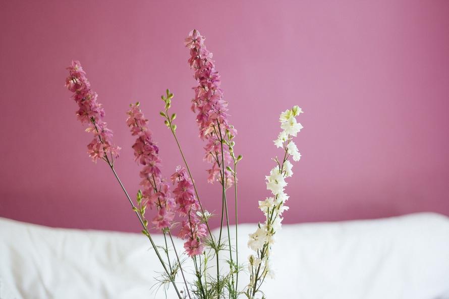 Condislife Beneficis Flors