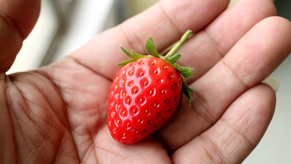 CondisLife Alimentos Quemaduras Fresas