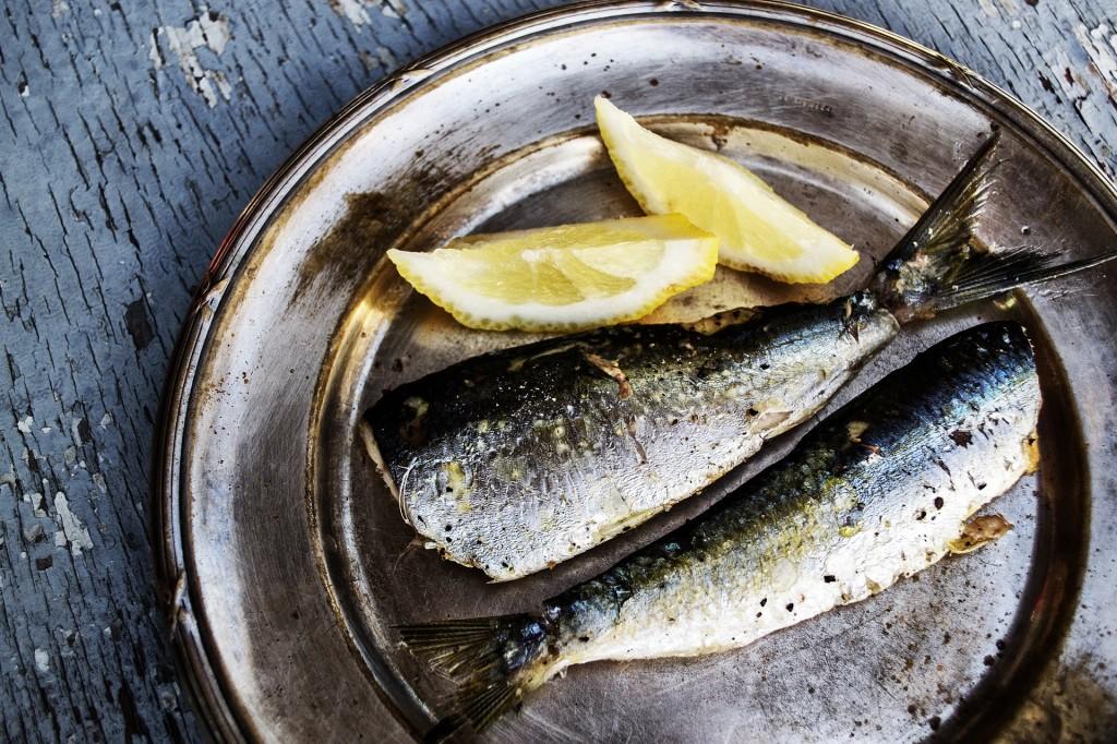 sardines-1489626_1920