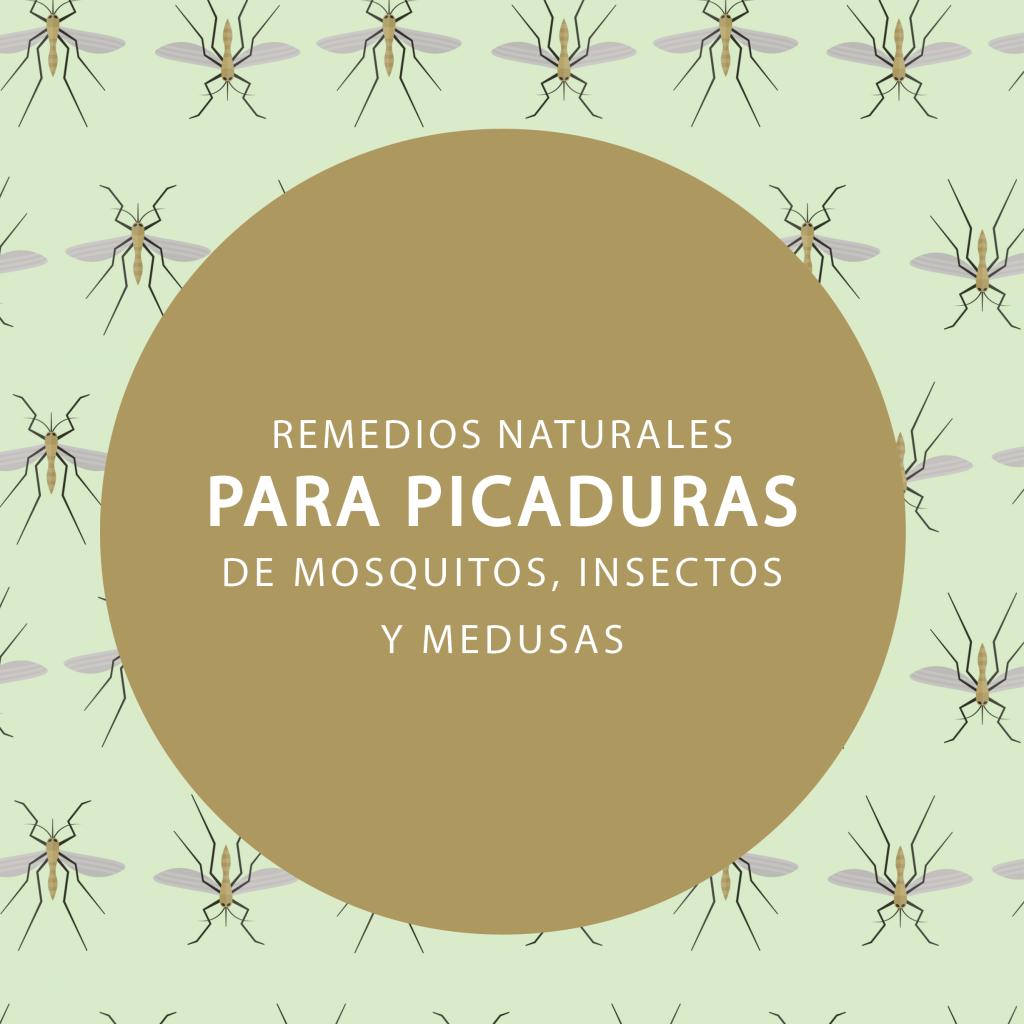 Condislife_remedios naturales para picaduras