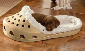 destacado regalos para perros navidad