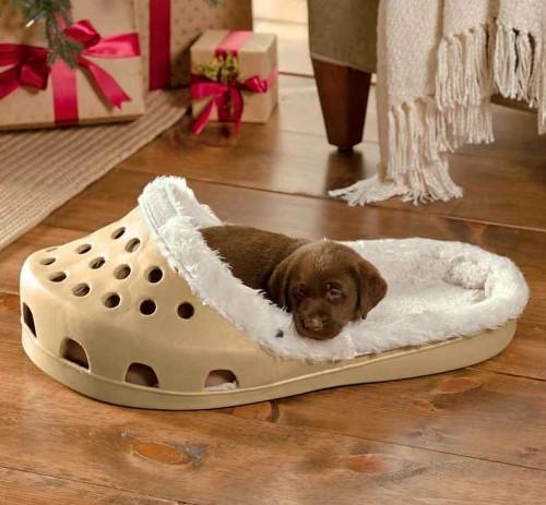 regalos-originales-cama-zapatilla-para-mascotas-500x463