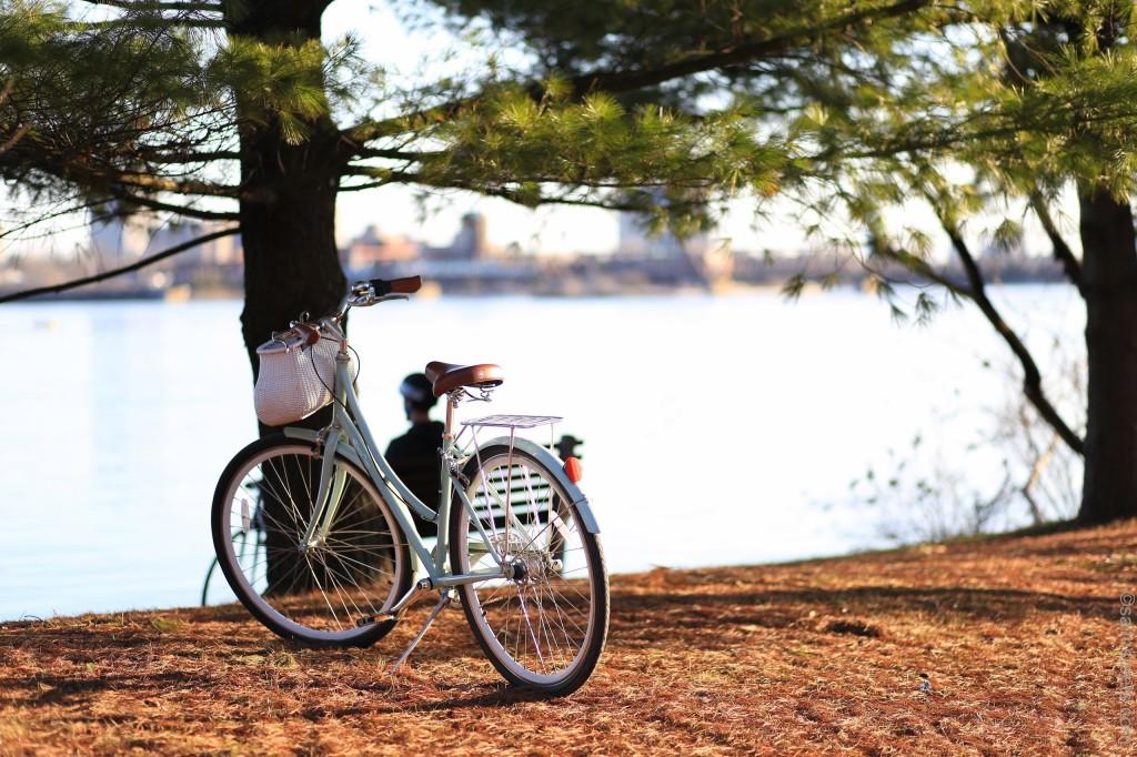 condis-bici-locales