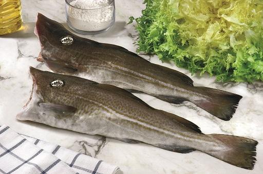 bacalao-SKREI-condis-BIS