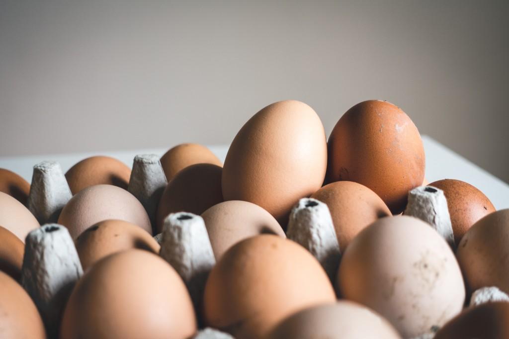 huevos-condis