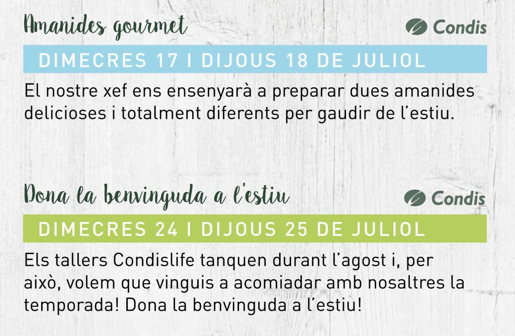 tallers-juliol-cat3