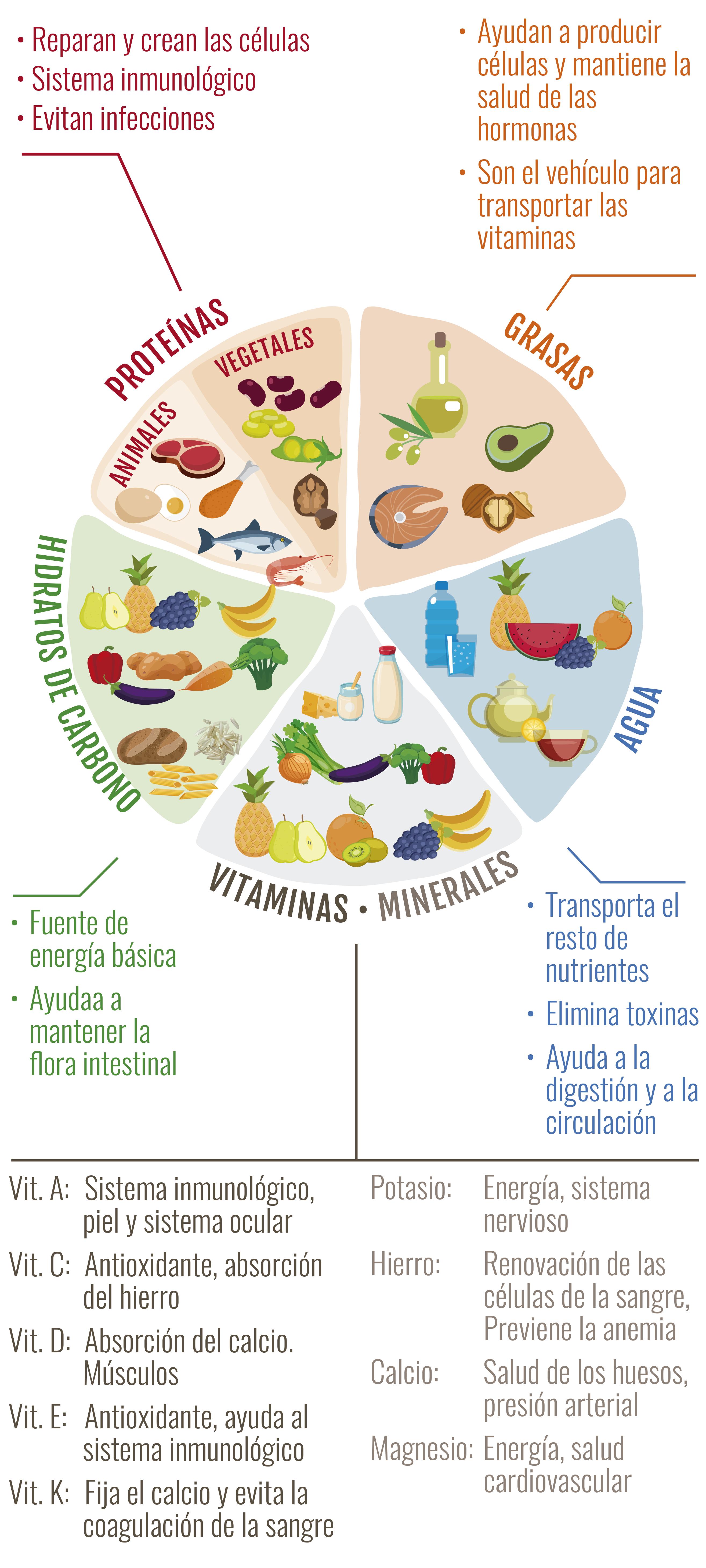 GRAFICO NUTRIENTES ES
