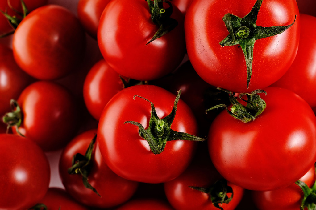 tomates-condis