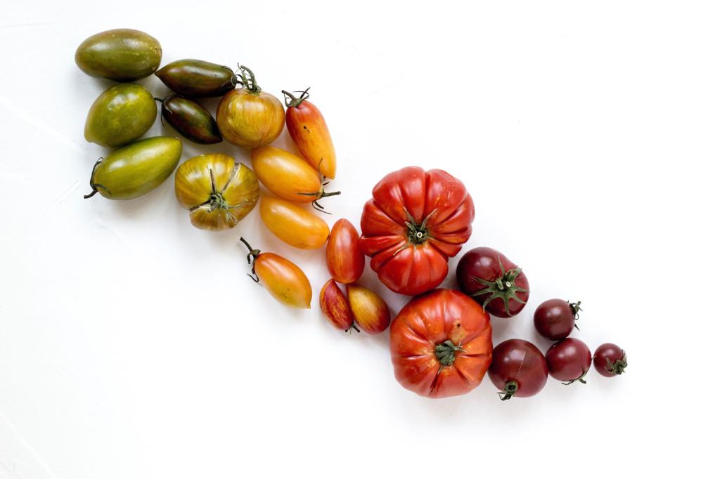 tomates-condis2
