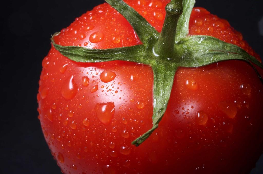 tomates-condis4