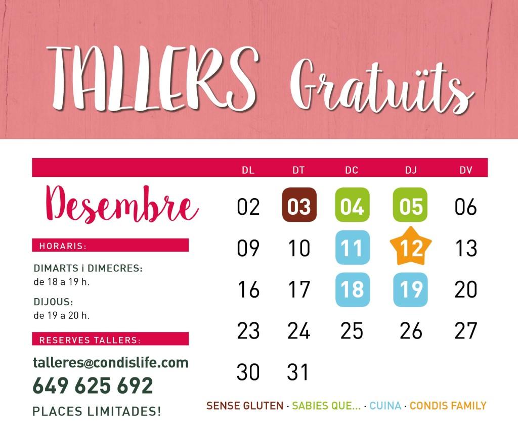 tallers-condislife-desembre-1