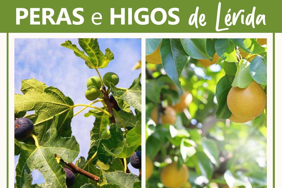 Peras_Higos_Lérida